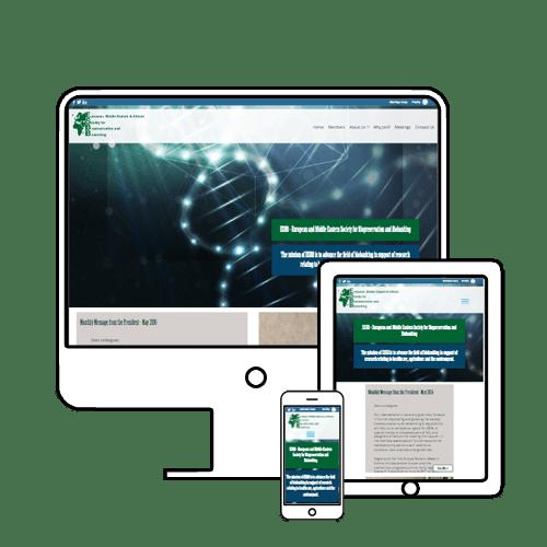 SCL responsive website design